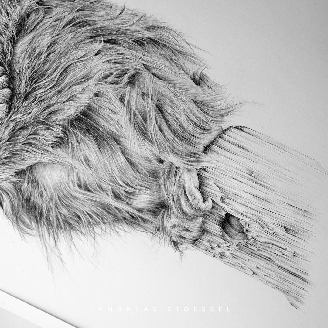 Astronut — Designatelier für Design & Illustration | Andreas Stoessel – Boris Orang-Utan